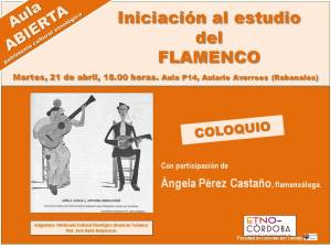 DIAPOSITIVA AULA FLAMENCO